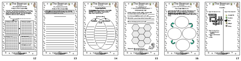Kids wings literature guide for the beeman by laurie krebs a writing rubric writing prompt and prewriting my life as a bee venn diagram compare and contrast books math and the honeycomb cell the queen bees life ccuart Gallery